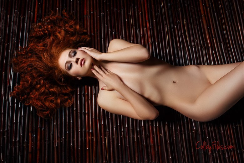 Artistic Nude Glamour Photo by Model Allie Summers
