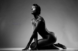 Artistic Nude Glamour Photo by Model Bronzed.In.Beauty