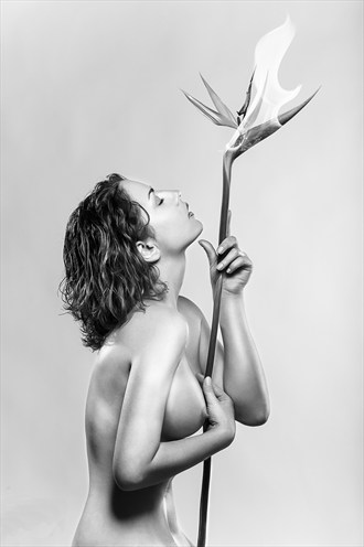Artistic Nude Glamour Photo by Model EffPlume