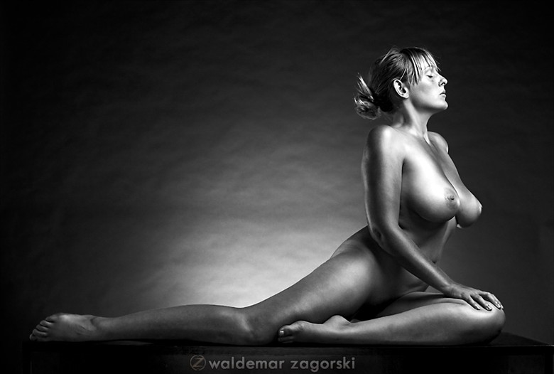Artistic Nude Glamour Photo by Model NicoleNudes