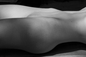 Artistic Nude Glamour Photo by Photographer Leland Ray