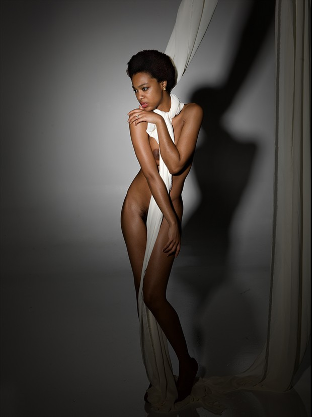 Artistic Nude Glamour Photo by Photographer mehamlett