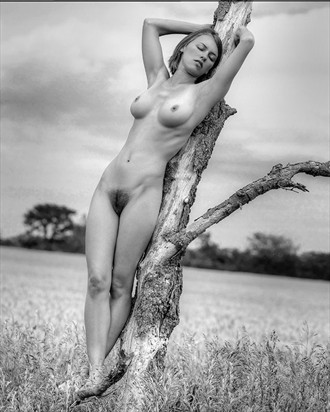 Artistic Nude Glamour Photo by Photographer wsclesky