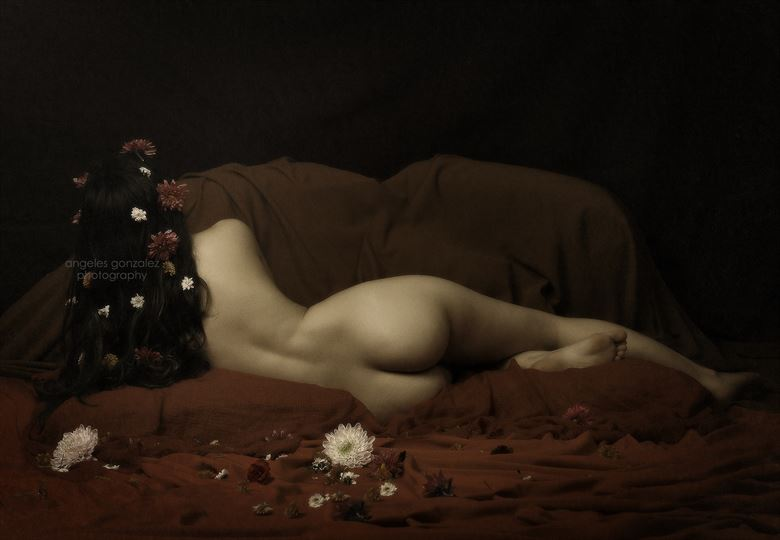 Artistic Nude Implied Nude Photo by Model Nieves