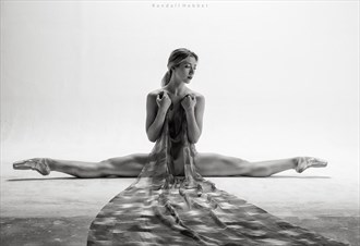 Artistic Nude Implied Nude Photo by Model PoppySeed Dancer