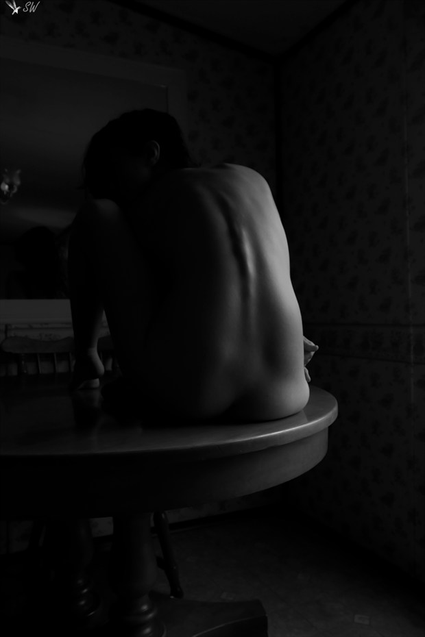 Artistic Nude Implied Nude Photo by Model Sirena E. Wren