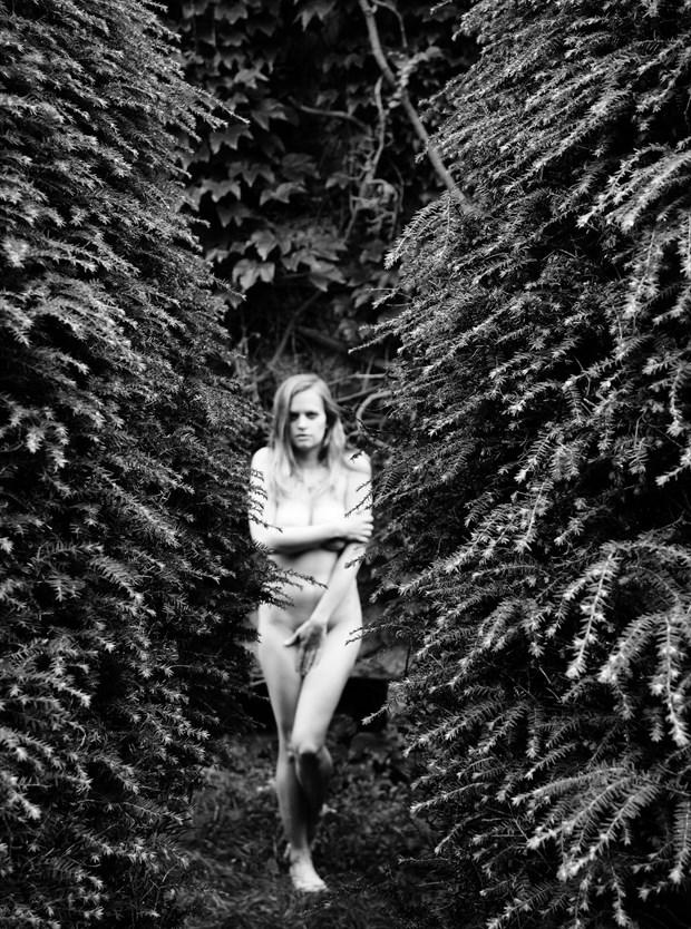 Artistic Nude Implied Nude Photo by Model Ursa Minor