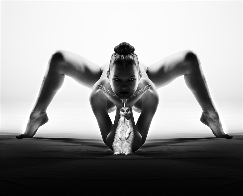 Artistic Nude Implied Nude Photo by Model vik tory