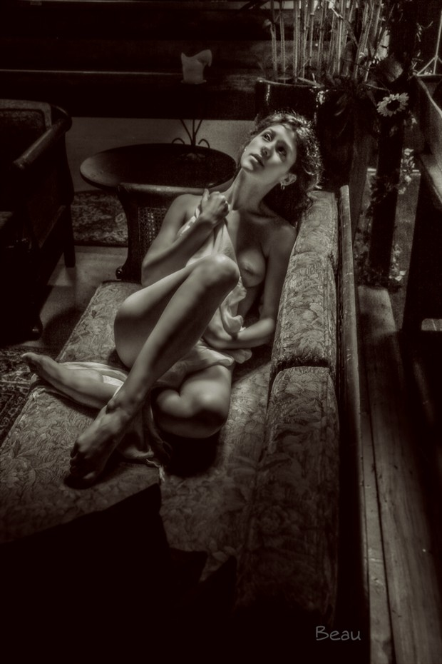 Artistic Nude Implied Nude Photo by Photographer Beau