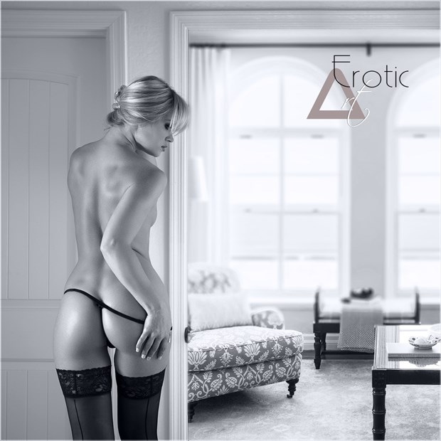 Artistic Nude Lingerie Artwork by Photographer ArtErotic