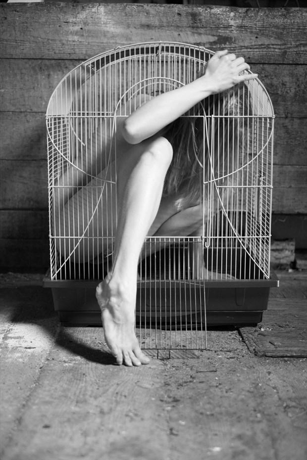 Artistic Nude Natural Light Photo by Model Ursa Minor