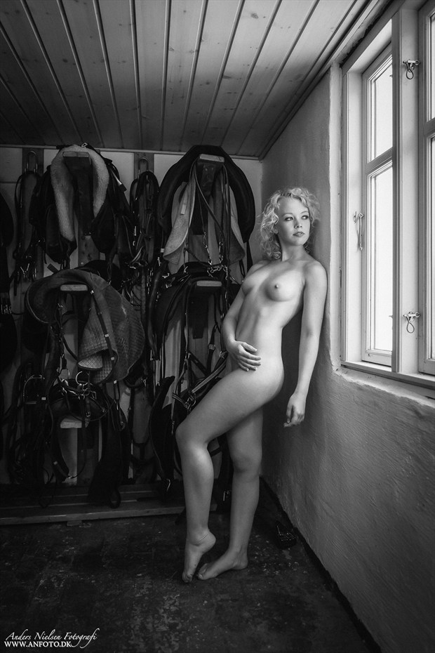 Artistic Nude Natural Light Photo by Photographer Anders Nielsen