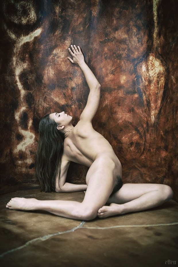Artistic Nude Natural Light Photo by Photographer Edward Maesen