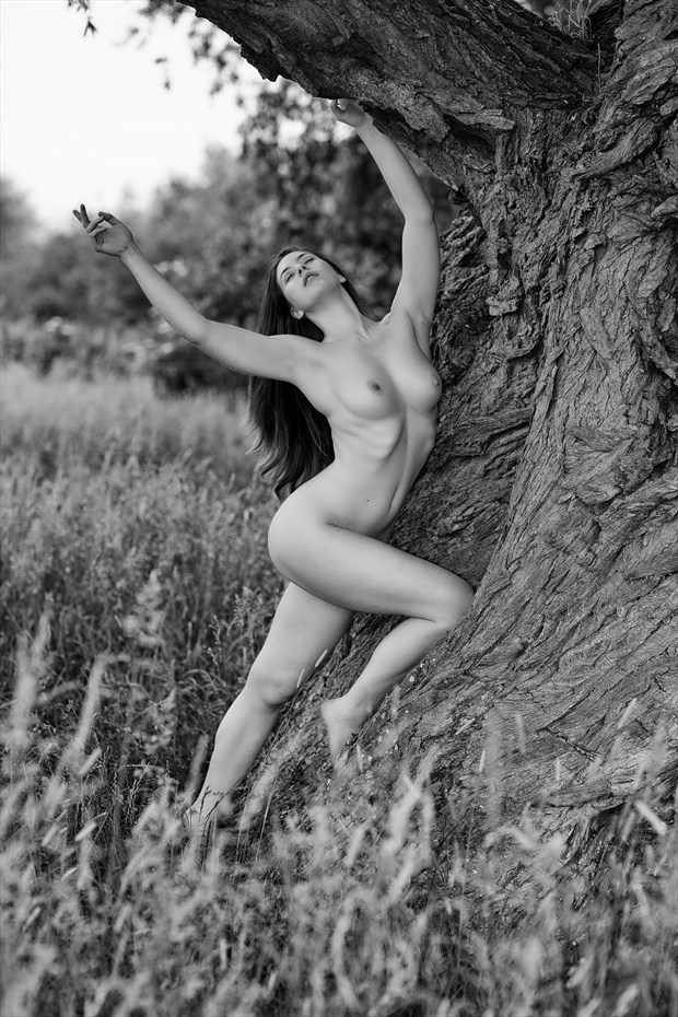 Artistic Nude Natural Light Photo by Photographer MelPettit