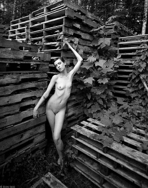 Artistic Nude Natural Light Photo by Photographer Ron Skei (RonChez)