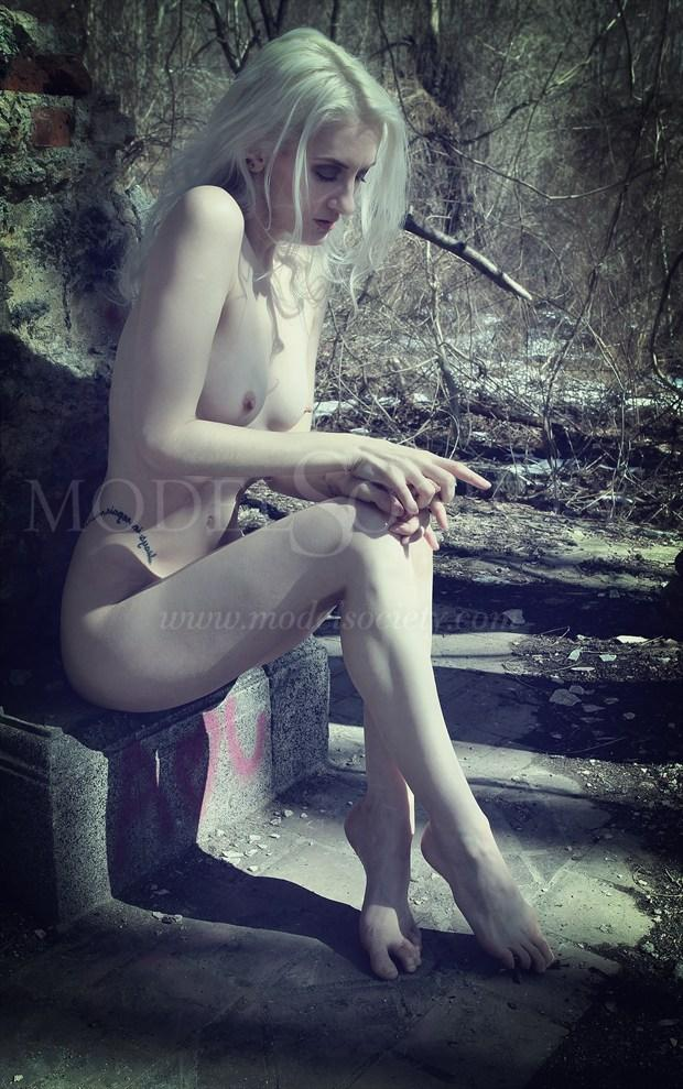 Artistic Nude Nature Artwork by Artist The Abandoned Dream