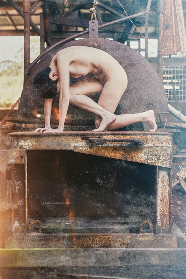 Artistic Nude Nature Artwork by Model Sonya Lynn