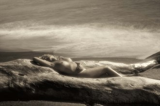 Artistic Nude Nature Artwork by Photographer Salim