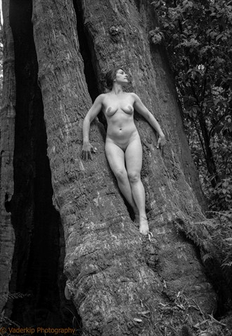 Artistic Nude Nature Artwork by Photographer Vaderkip