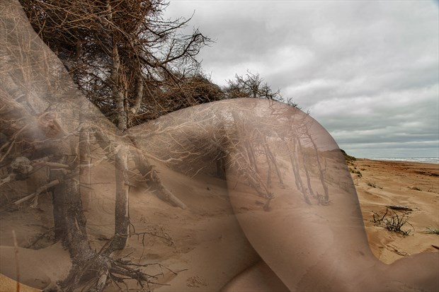 Artistic Nude Nature Artwork by Photographer milchuk