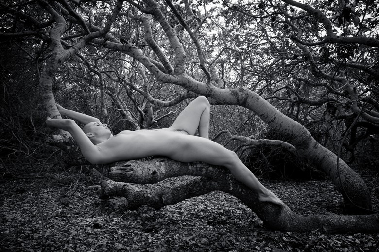 Artistic Nude Nature Photo by Model 000000000