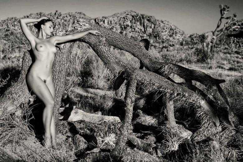Artistic Nude Nature Photo by Model AnastasiaA