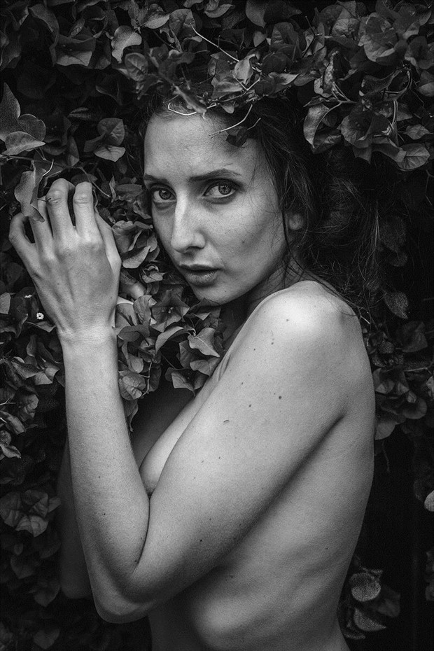 Artistic Nude Nature Photo by Model Anoush A