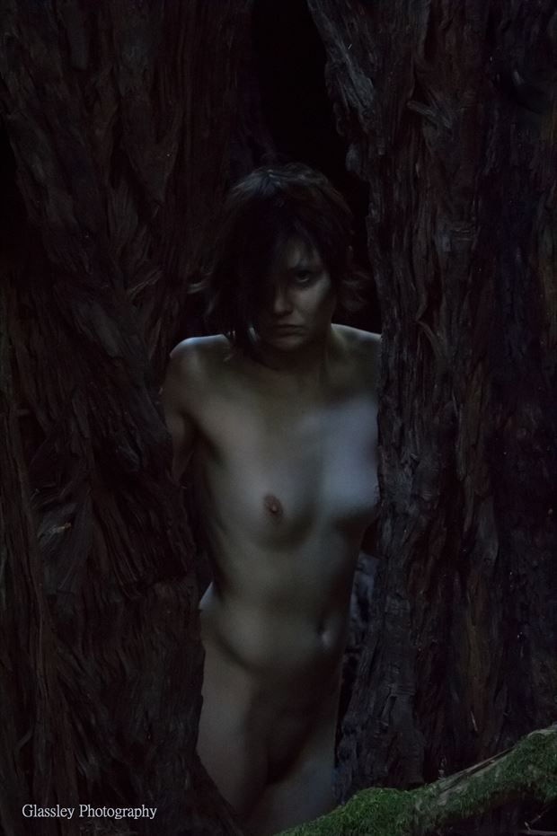 Artistic Nude Nature Photo by Model Ember No%C3%ABlle