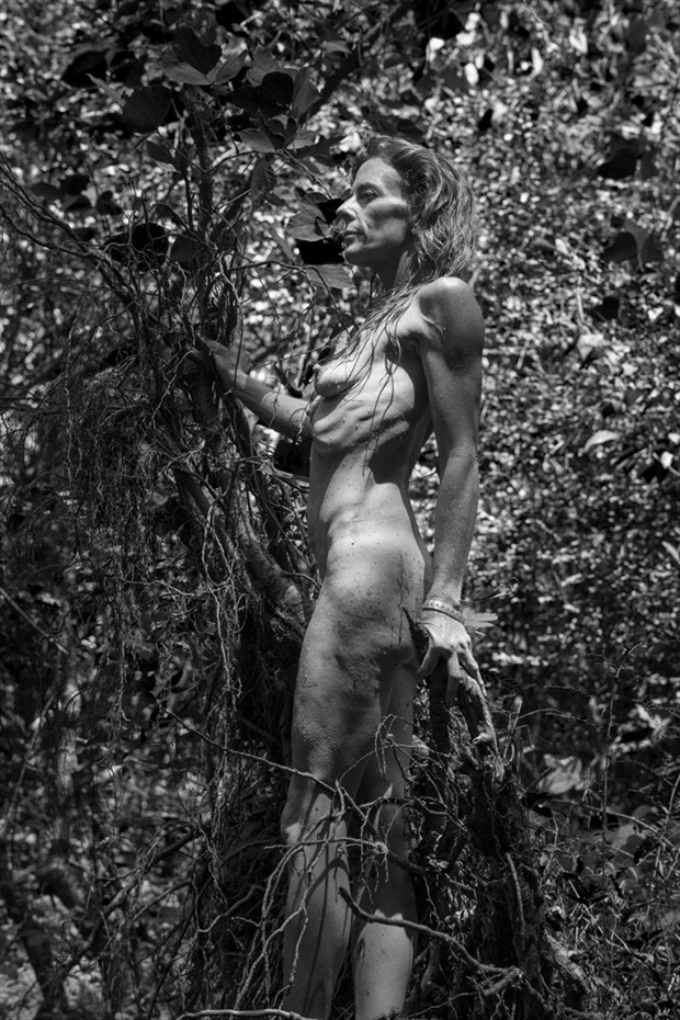 Artistic Nude Nature Photo by Model Hblake