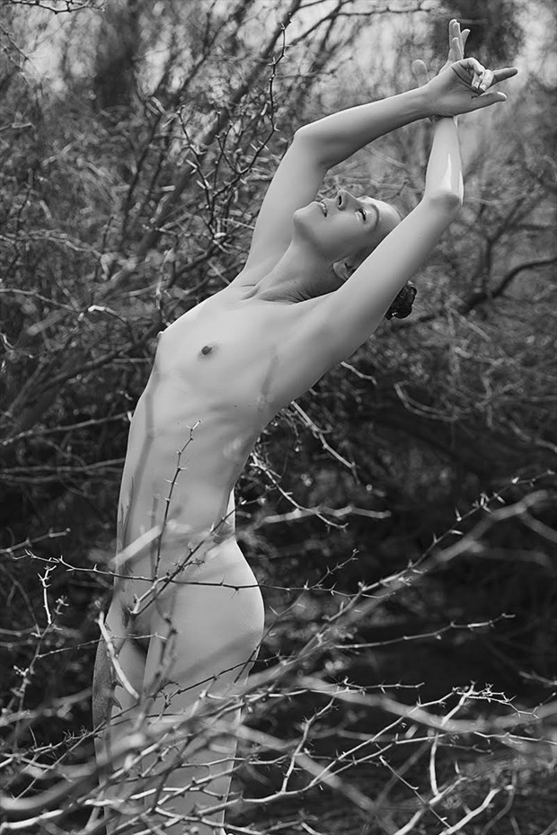 Artistic Nude Nature Photo by Model Jen B E