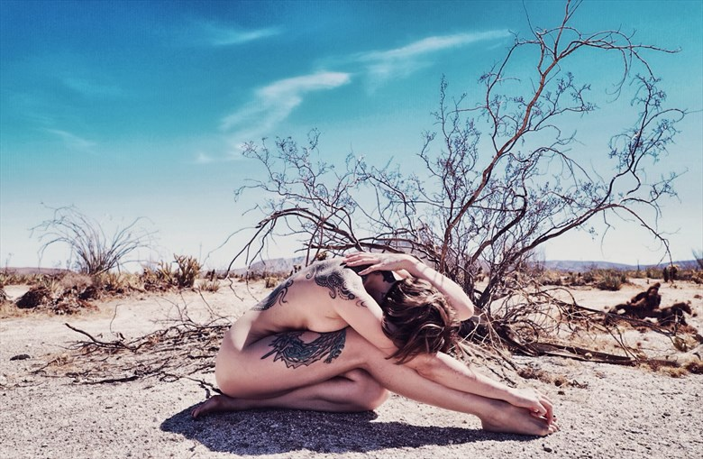 Artistic Nude Nature Photo by Model SeaStar