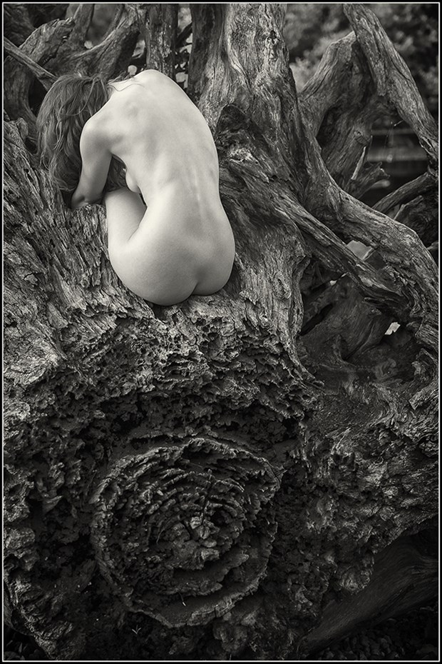 Artistic Nude Nature Photo by Model Sienna Hayes