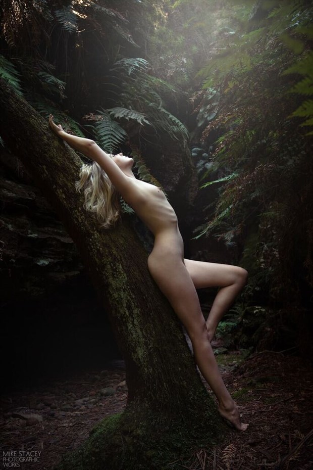 Artistic Nude Nature Photo by Model Sylph Sia