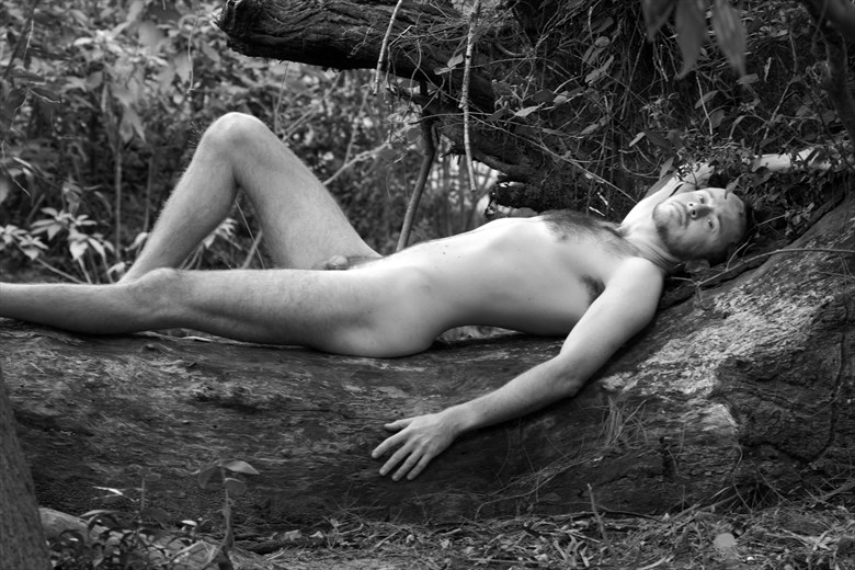 Artistic Nude Nature Photo by Model Teetree