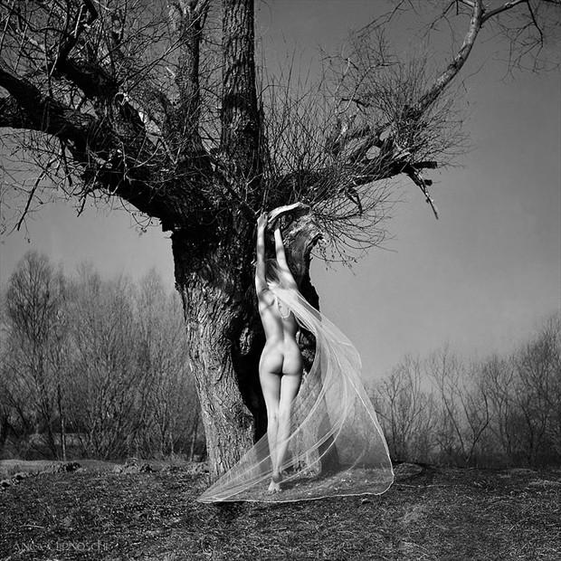Artistic Nude Nature Photo by Photographer Anca Cernoschi