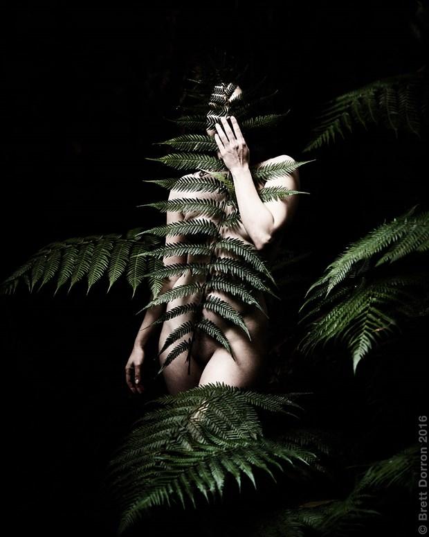 Artistic Nude Nature Photo by Photographer Brett Dorron