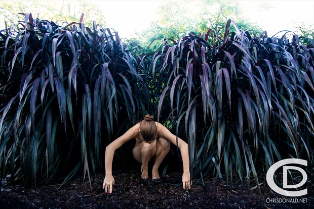 Artistic Nude Nature Photo by Photographer Christopher Donald