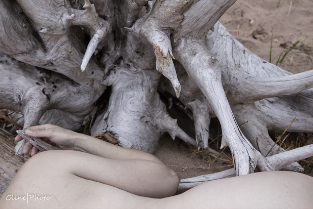 Artistic Nude Nature Photo by Photographer ClinePhoto