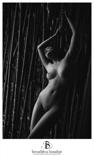 Artistic Nude Nature Photo by Photographer Jen Trombly