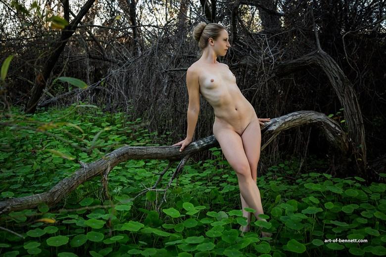 Artistic Nude Nature Photo by Photographer Robert M. Bennett