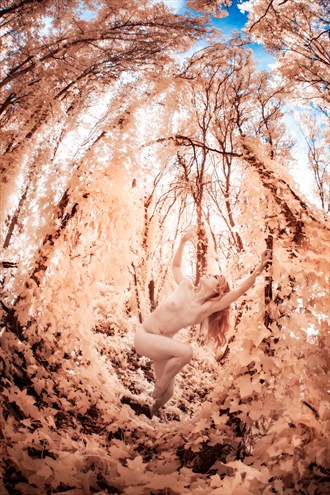 Artistic Nude Nature Photo by Photographer Under Black Light