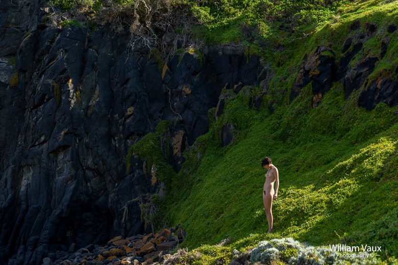 Artistic Nude Nature Photo by Photographer William Vaux