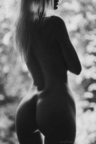 Artistic Nude Photo by Model Ryann S