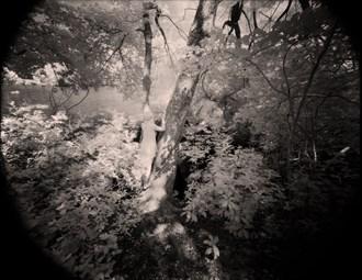 Artistic Nude Photo by Photographer Chiarescuro