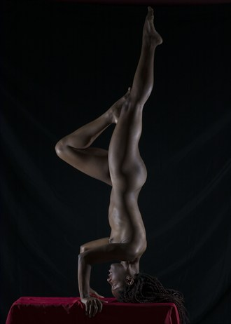 Artistic Nude Photo by Photographer DMD67