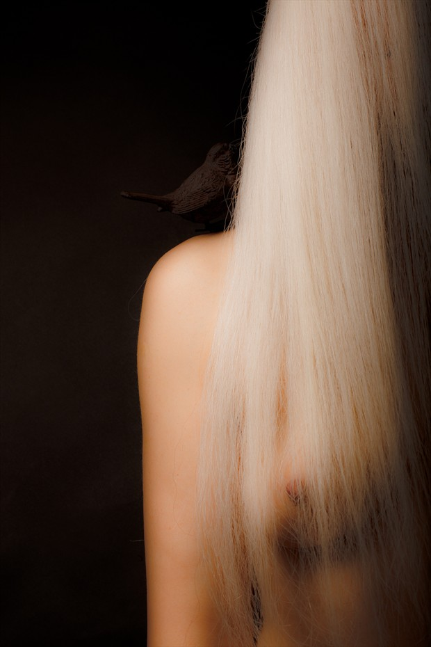 Artistic Nude Photo by Photographer SylO