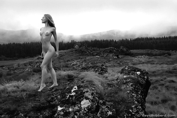 Artistic Nude Photo by Photographer davidhibberd
