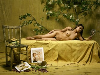 Artistic Nude Photo by Photographer willie nash
