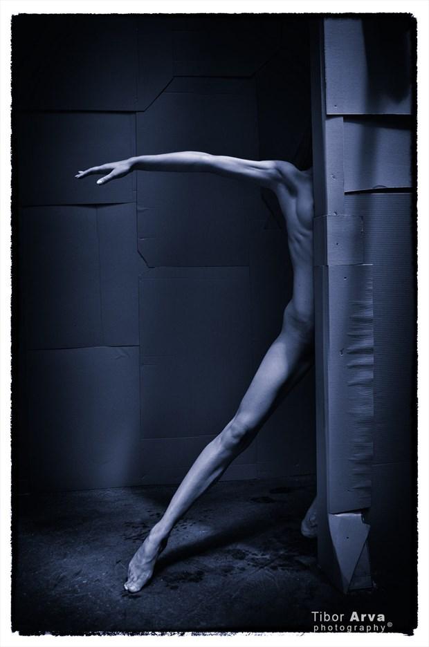 Artistic Nude Sensual Photo by Photographer Tibor Arva