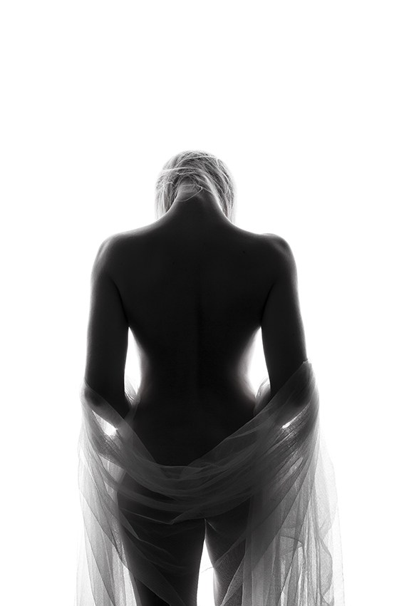 Artistic Nude Silhouette Photo by Photographer 1102
